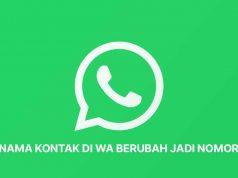 3 Cara Mengatasi Kontak WhatsApp Berubah Jadi Nomor Semua